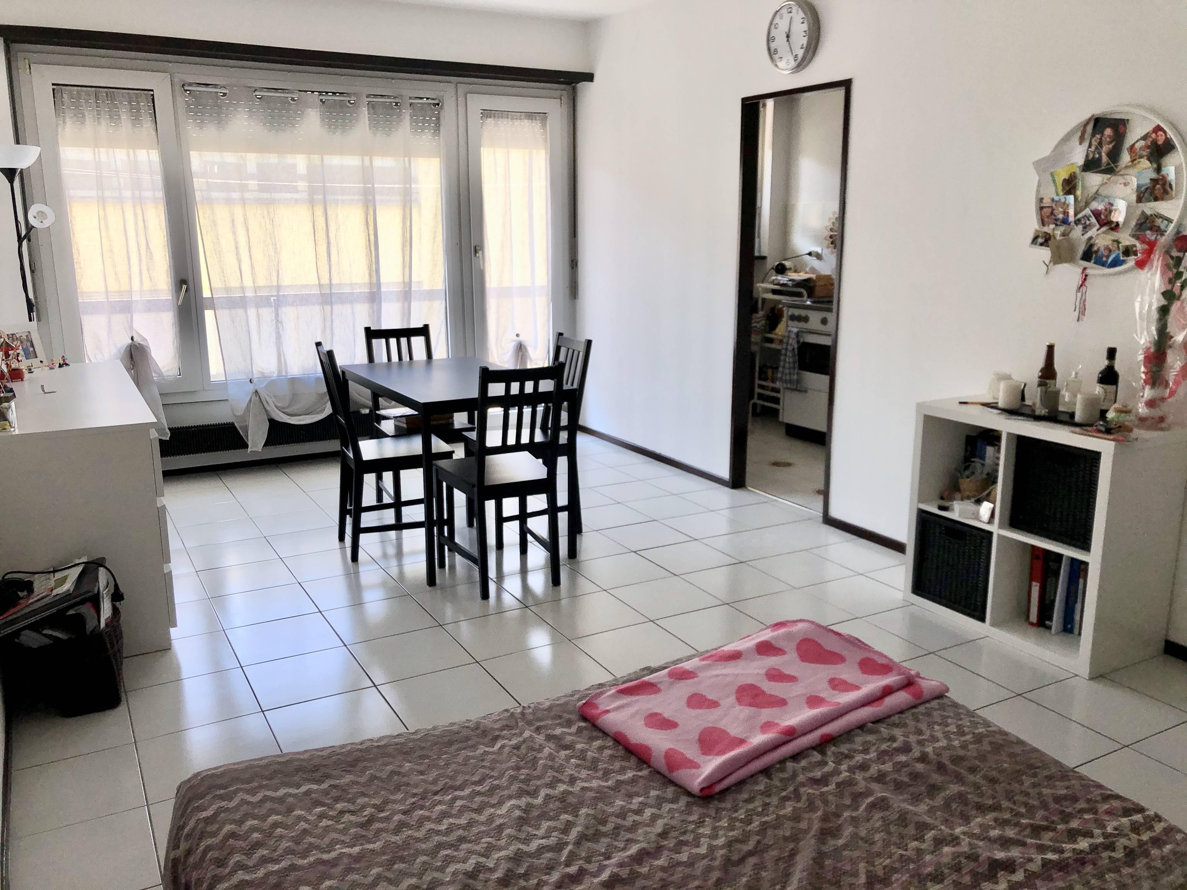 Appartamento 1.5 locali con Terrazzo